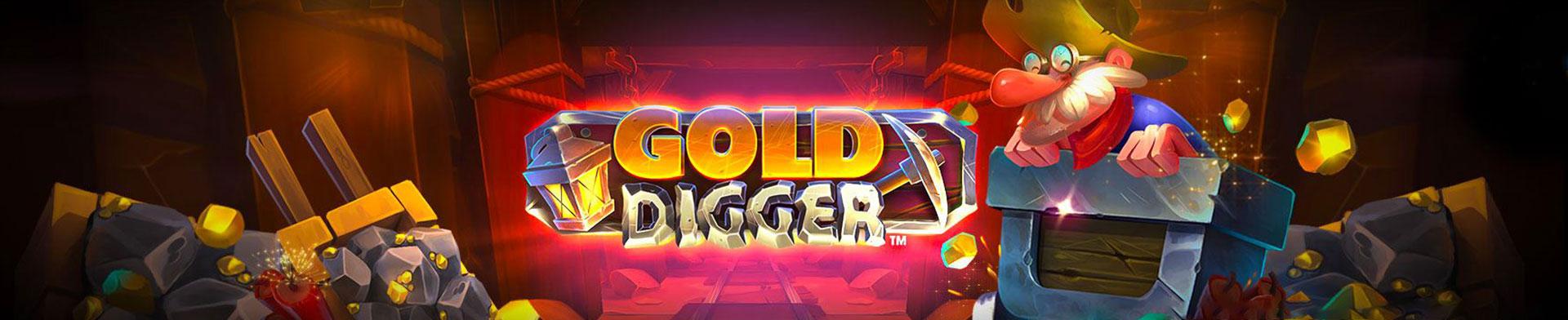 Gold Digger Banner